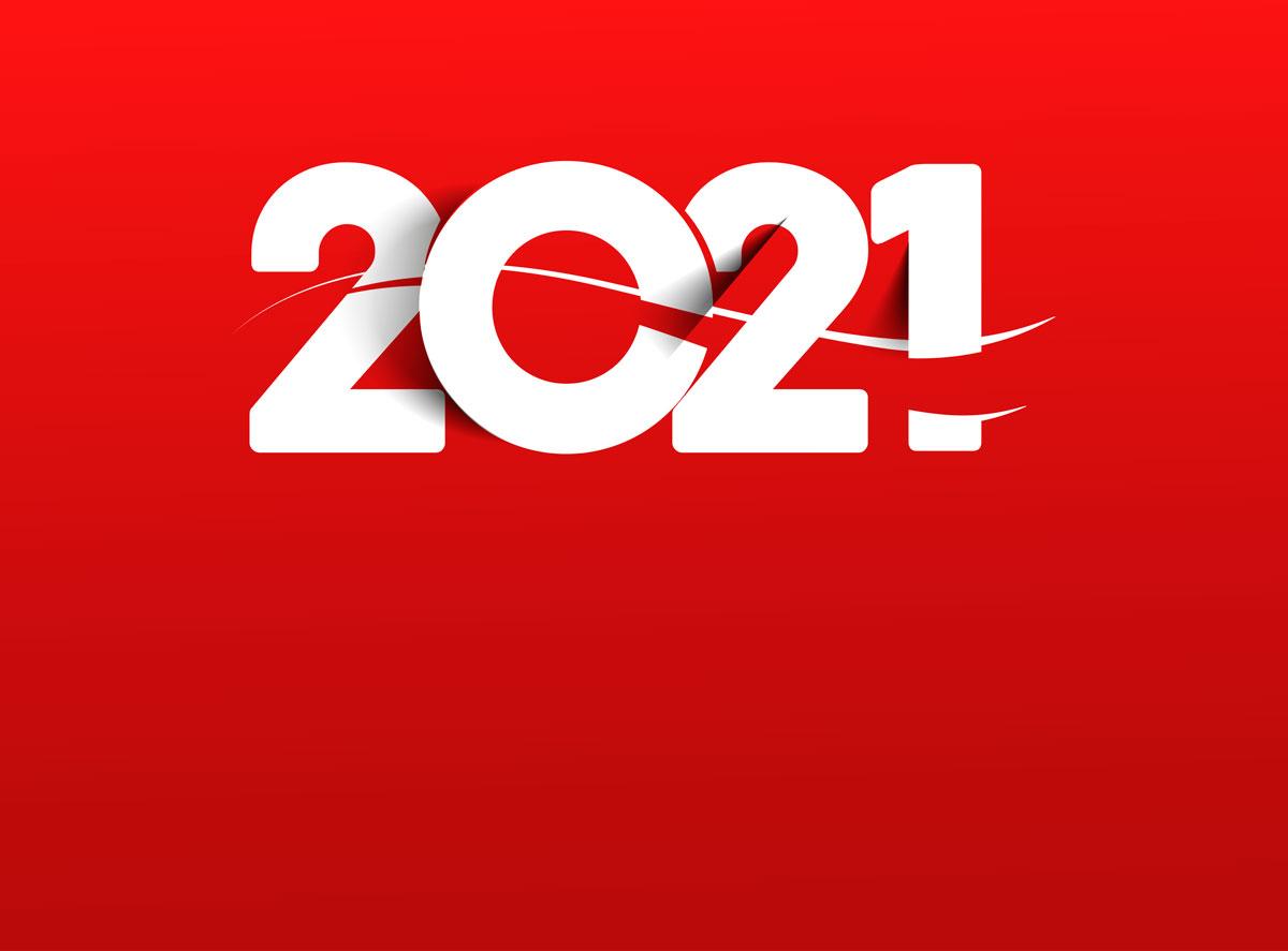 Balance 2020 - Alquiler vacacional Lodging